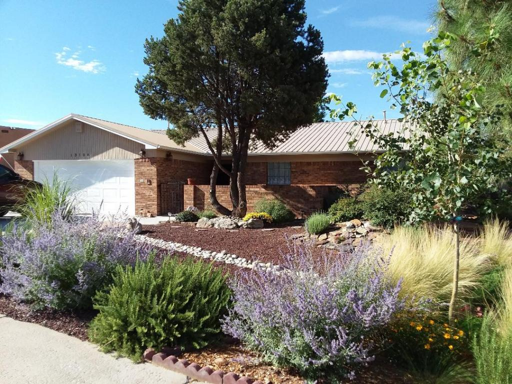 Street View of Home with Native Southwest Landscaping